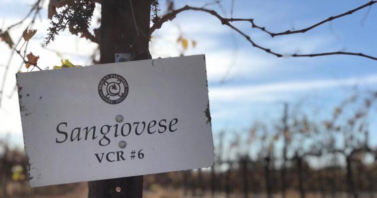 カリフォルニア産イタリアワインのパイオニア Mount Palomar Winery