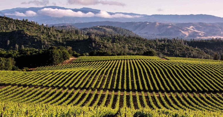 ◆終了◆ 2019.04.20   南カリフォルニアワインを楽しむ会 第9回 【パソロブレス】