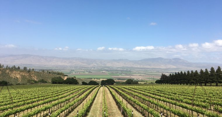 ◆満員御礼◆ 2019.07.12   カリフォルニアワインをプロ講師と味わう会
