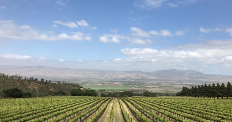 ◆コロナのため延期◆ 2020.08.29   南カリフォルニアワインを楽しむ会 第14回 【サンタバーバラ】
