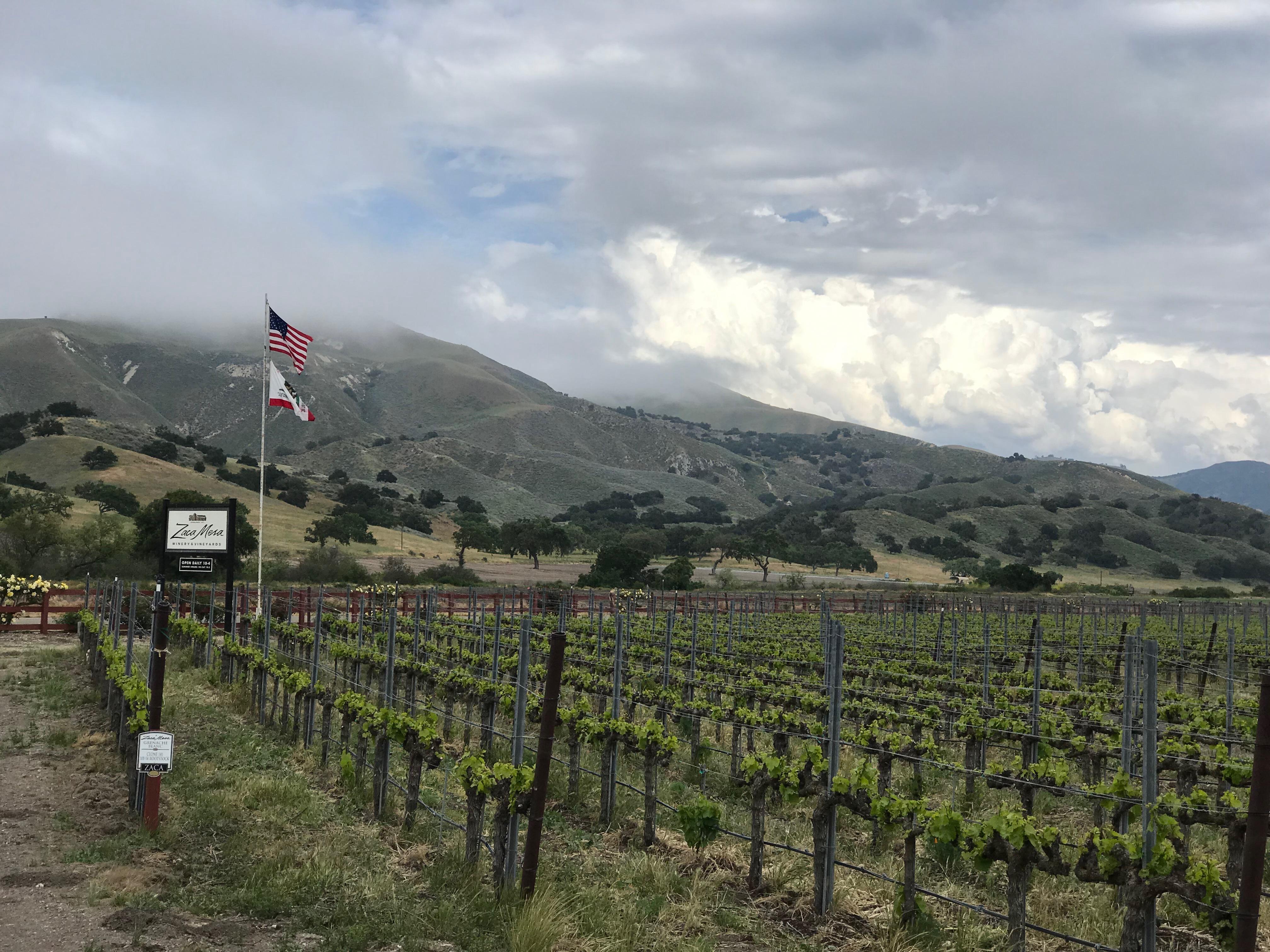 ◆終了◆ 2019.08.31   南カリフォルニアワインを楽しむ会 第11回 【サンタバーバラ】