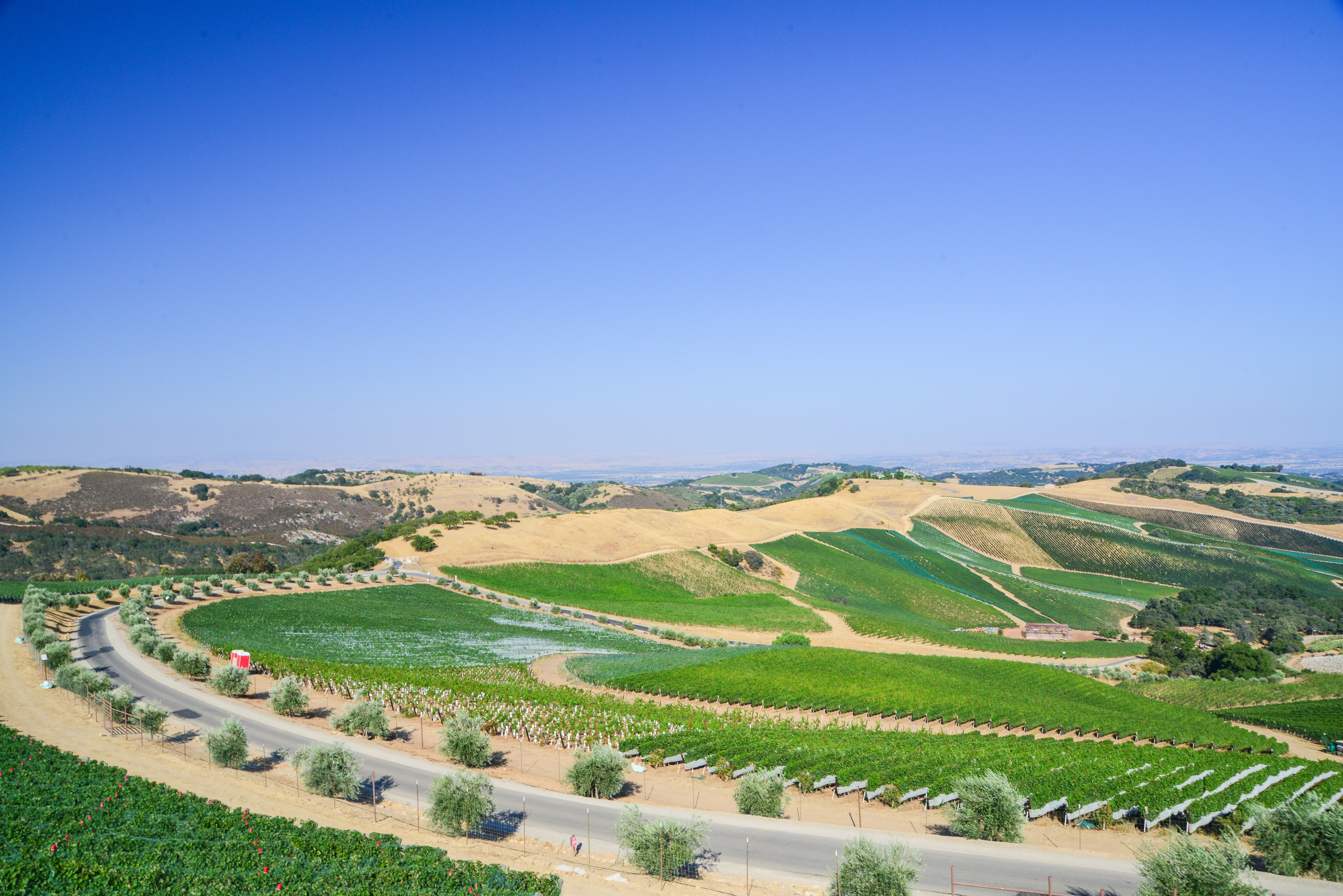 ◆終了◆ 2019.10.26   南カリフォルニアワインを楽しむ会 第12回 【パソロブレス】
