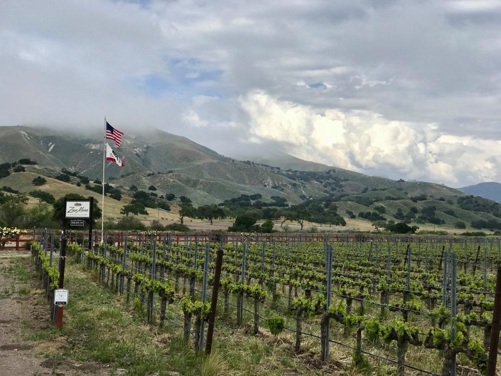 ◆終了◆ 2021.2.20   南カリフォルニアワインを楽しむ会 第17回 【サンタバーバラ】